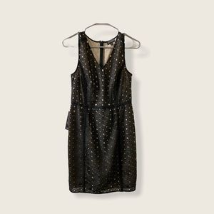 The Limited Lace Eyelet Dress